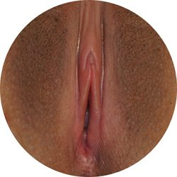 normal_labia_3